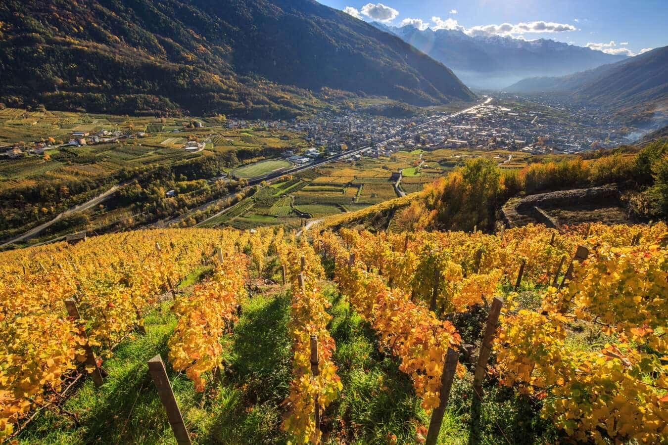 Un autunno pieno di sagre ed eventi in Valtellina